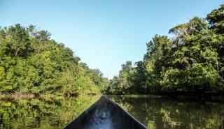 """Araguato Expeditions"" Orinoco Delta - Venezuela"