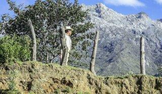 """Araguato Expeditions"" Tours | Trek Los Nevados - Sierra Nevada National Park - Venezuela"